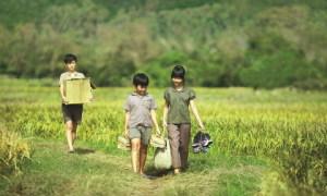 'Tôi thấy hoa vàng trên cỏ xanh' - bài ca êm đềm về thời ấu thơ